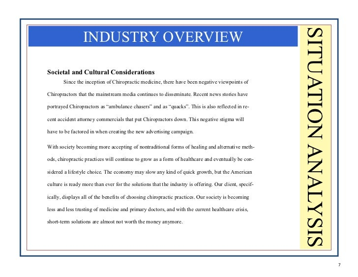 6 7 SITUATION ANALYSIS INDUSTRY OVERVIEWSocietal And Cultural Considerations