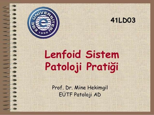 Lenfoid Sistem  Patoloji Pratiği  Prof. Dr. Mine Hekimgil  EÜTF Patoloji AD  41LD03