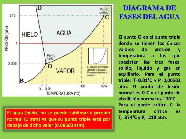 Diagrama De Contrastes  plementarios also Siempreviva Mayorla Planta De Los besides 5579c0d2e58ecedce500016b further Pond Myths together with Watch. on jar diagram