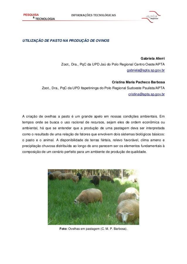 UTILIZAÇÃO DE PASTO NA PRODUÇÃO DE OVINOS  Gabriela Aferri  Zoot., Dra., PqC da UPD Jaú do Polo Regional Centro Oeste/APTA...