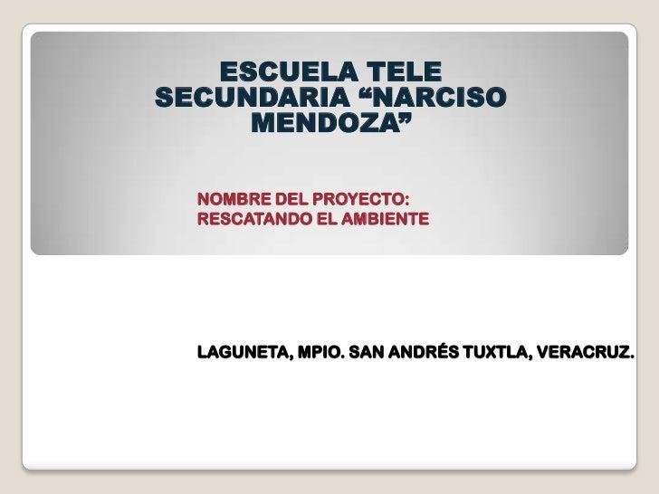 """ESCUELA TELESECUNDARIA """"NARCISO     MENDOZA""""  NOMBRE DEL PROYECTO:  RESCATANDO EL AMBIENTE  LAGUNETA, MPIO. SAN ANDRÉS TUX..."""