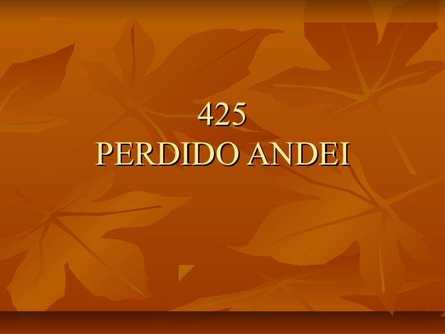 425425 PERDIDO ANDEIPERDIDO ANDEI
