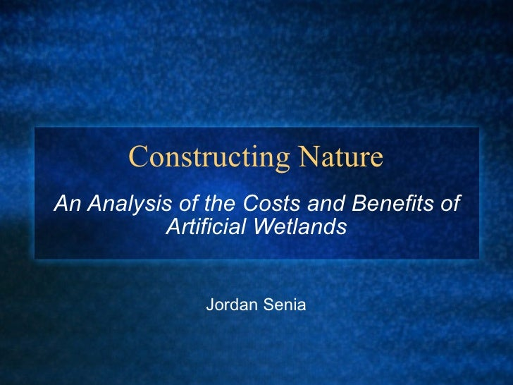 Constructing Nature An Analysis of the Costs and Benefits of Artificial Wetlands Jordan Senia