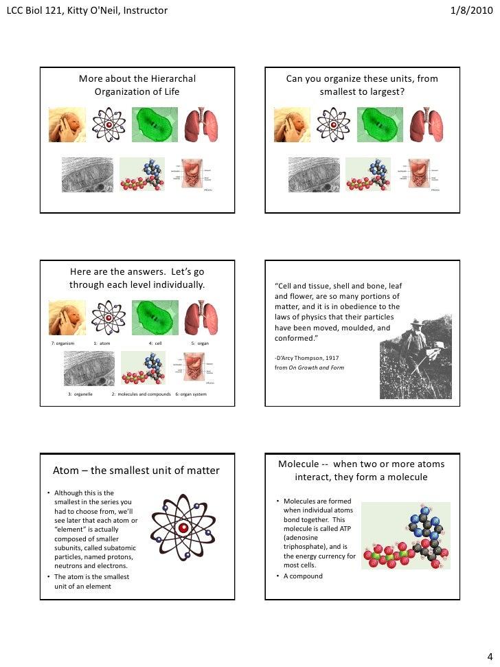 Lec 1.1 & 1.2 - org of life, subatomic particles