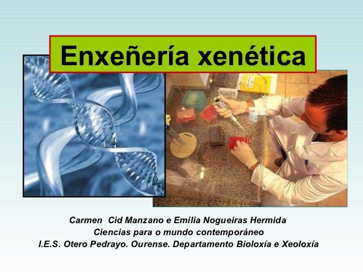 Carmen  Cid Manzano e Emilia Nogueiras Hermida  Ciencias para o mundo contemporáneo I.E.S. Otero Pedrayo. Ourense. Departa...