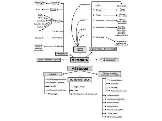 Tipo de organização da matéria 2 modelos organizacionais básicos : a) todas as matérias na semana b) matérias ou grupos de...