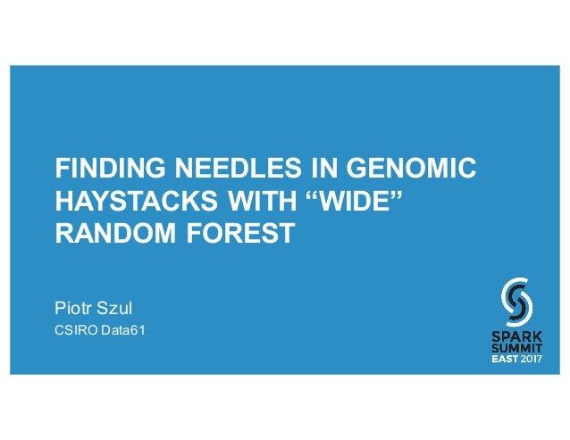 "FINDING NEEDLES IN GENOMIC HAYSTACKS WITH ""WIDE"" RANDOM FOREST Piotr Szul CSIRO Data61"