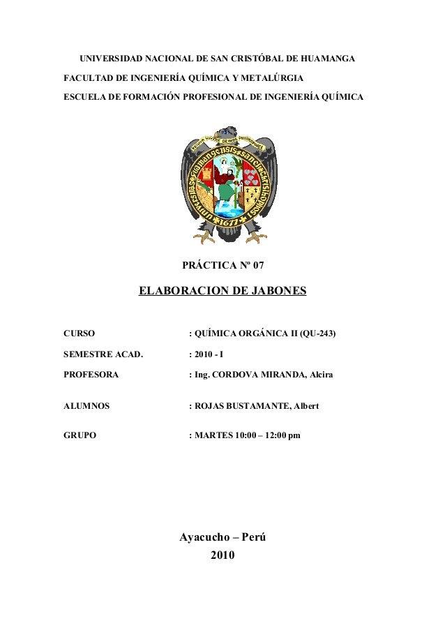 UNIVERSIDAD NACIONAL DE SAN CRISTÓBAL DE HUAMANGAFACULTAD DE INGENIERÍA QUÍMICA Y METALÚRGIAESCUELA DE FORMACIÓN PROFESION...