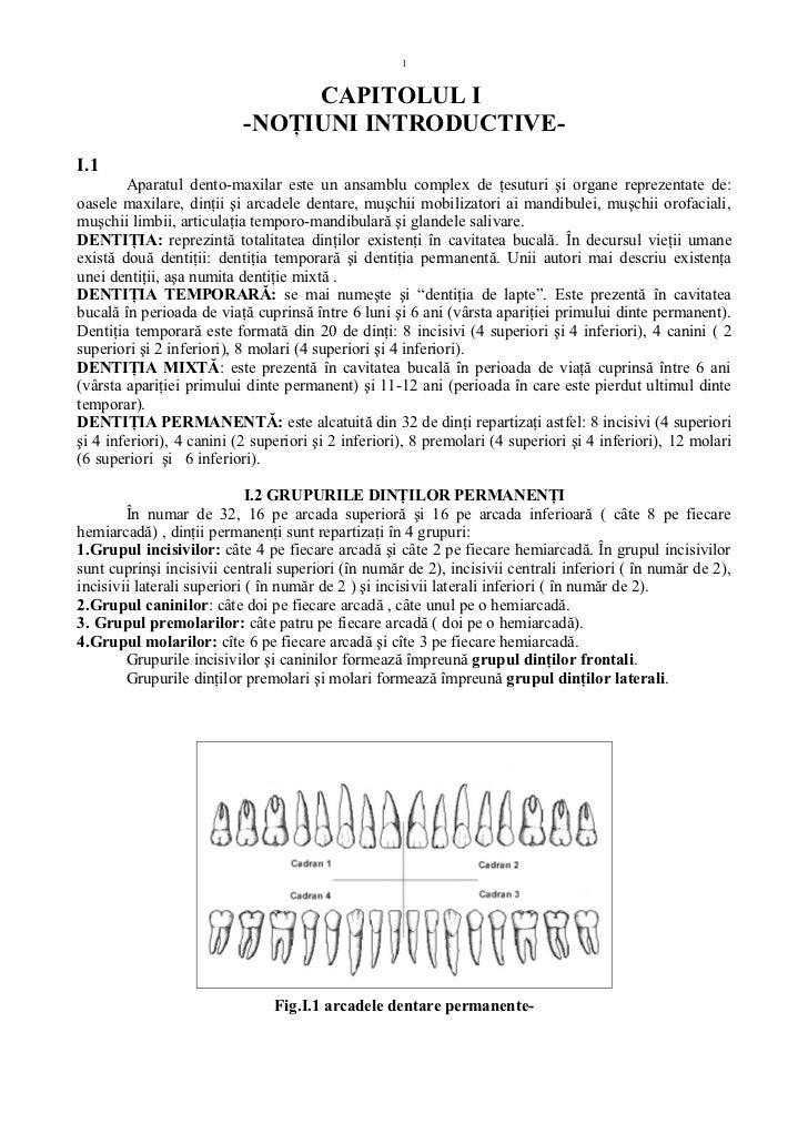 1                                CAPITOLUL I                           -NOŢIUNI INTRODUCTIVE-I.1        Aparatul dento-max...