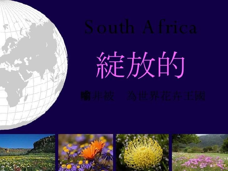 South Africa 綻放的 南非被喻為世界花卉王國