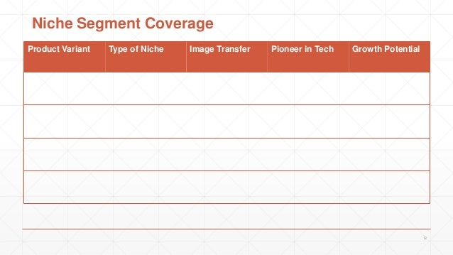 Product Variant Type of Niche Image Transfer Pioneer in Tech Growth Potential 12 Niche Segment Coverage