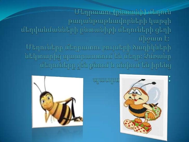  Մեղուները թռչող միջատներ են, սերտորն կապված կիպրերի և մրջյունների հետ:Ներկայումս հայտնի են մոտ 20 000 տեսակի մեղուներ:Դր...