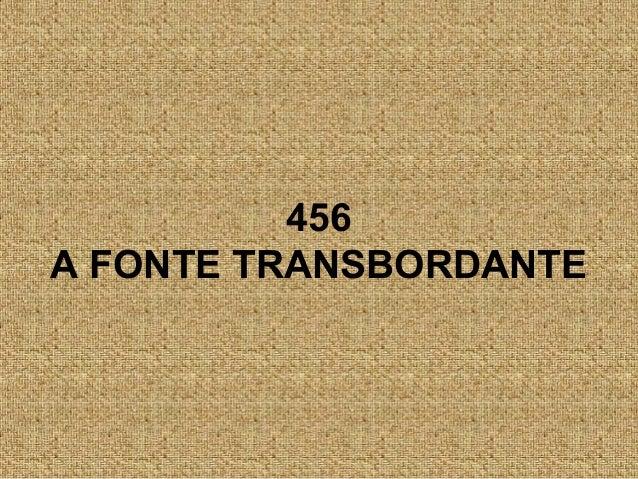 456 A FONTE TRANSBORDANTE