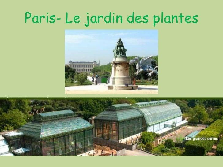 458 paris le jardin des plantes for Le jardin de plantes