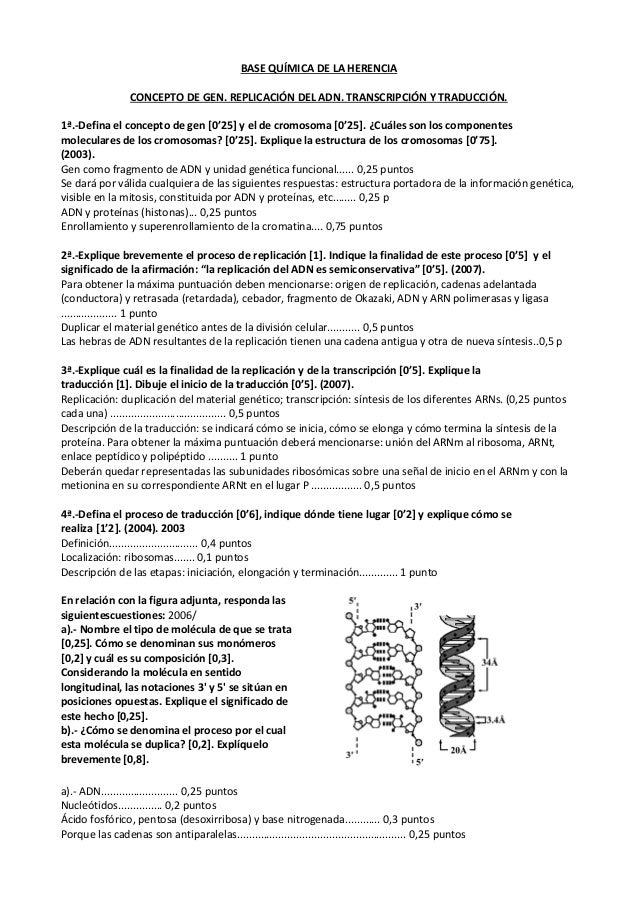 Biología Pau Andalucia Base Química De La Herencia