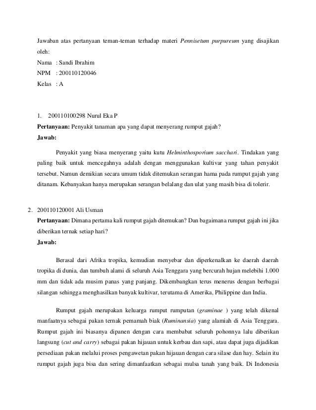 Jawaban atas pertanyaan teman-teman terhadap materi Pennisetum purpureum yang disajikan oleh: Nama : Sandi Ibrahim NPM : 2...
