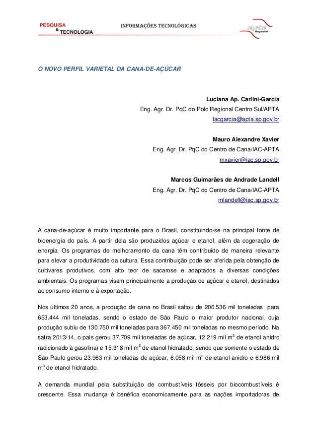 O NOVO PERFIL VARIETAL DA CANA-DE-AÇÚCAR  Luciana Ap. Carlini-Garcia  Eng. Agr. Dr. PqC do Polo Regional Centro Sul/APTA  ...