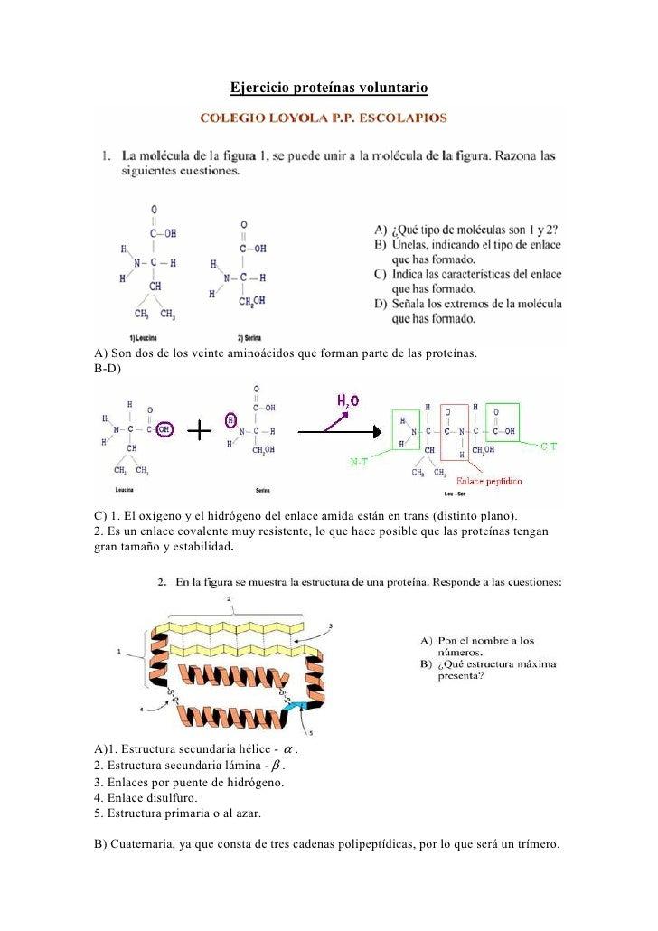 Ejercicio proteínas voluntarioA) Son dos de los veinte aminoácidos que forman parte de las proteínas.B-D)C) 1. El oxígeno ...