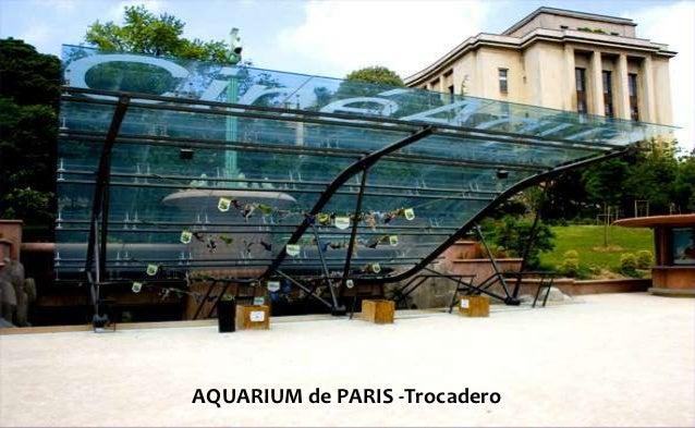AQUARIUM de PARIS -Trocadero