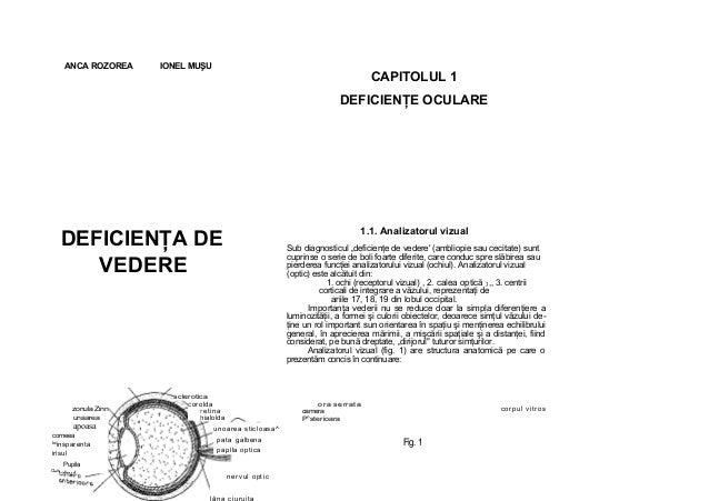 """ANCA ROZOREA IONEL MUŞU CAPITOLUL 1 DEFICIENŢE OCULARE DEFICIENŢA DE VEDERE 1.1. Analizatorul vizual Sub diagnosticul """"def..."""