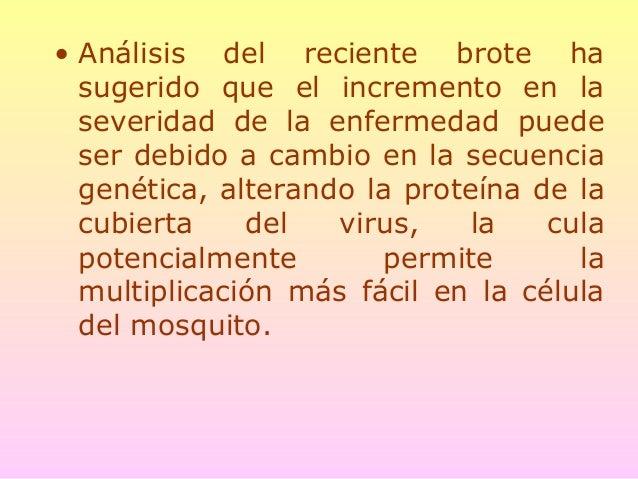 Medidas anti-mosquito • El insecticida organofosforado ABATE está siendo utilizado a gran escala. • ABATE puede prevenir e...