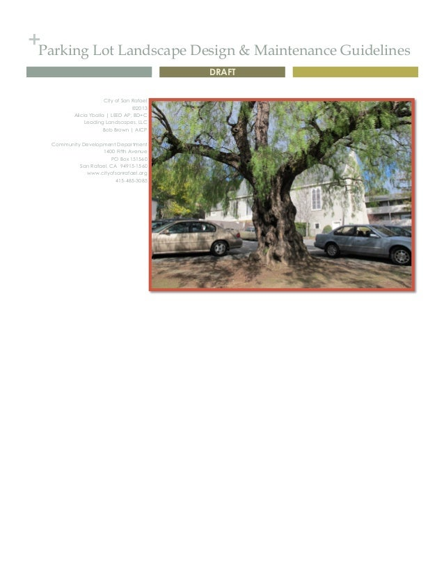+Parking Lot Landscape Design U0026 Maintenance Guidelines DRAFT City Of San  Rafael ©2013 Alicia ...