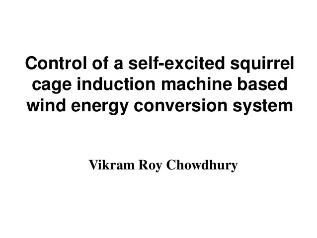 Control of a self-excited squirrel cage induction machine based wind energy conversion system  Vikram Roy Chowdhury
