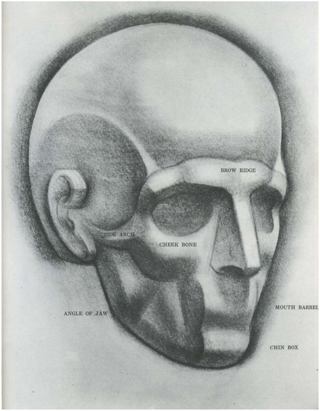 burne-hogarth-drawing-the-human-head