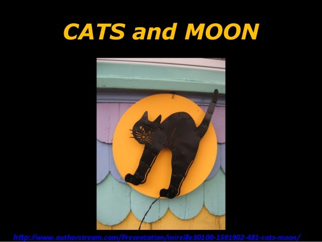 CATS and MOONhttp   http://www.authorstream.com/Presentation/mireille30100-1591902-481-cats-moon/