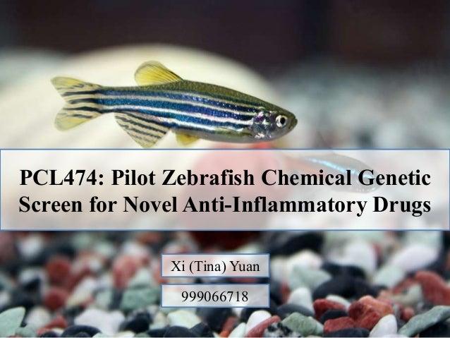 A Zebrafish Model for a Human Myopathy Associated with Mutation of the Unconventional Myosin MYO18B