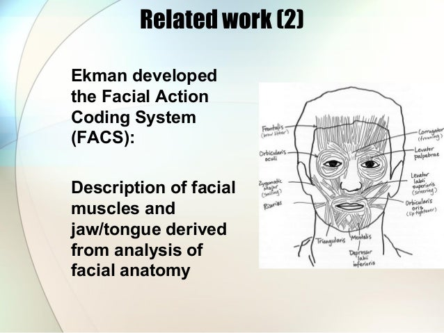 facial emotion recognition systems Emotion from facial expression recognition manuel graña, andoni beristain  representative facial expression recognition systems  emotion recognition through facial expression analysis based on a neurofuzzy network neural networks.