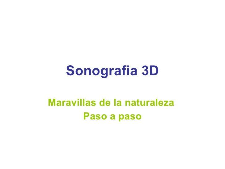 Sonografia 3D Maravillas de la naturaleza  Paso a paso