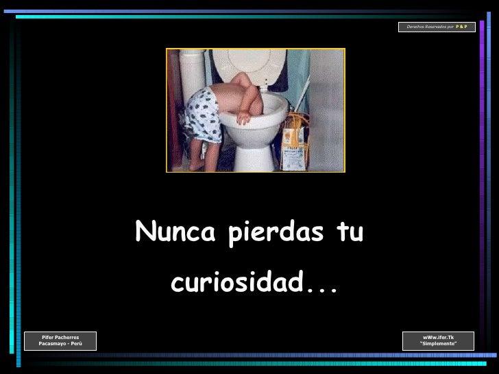 Nunca pierdas tu  curiosidad...