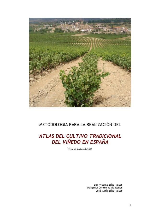 METODOLOGIA PARA LA REALIZACIÓN DELATLAS DEL CULTIVO TRADICIONAL    DEL VIÑEDO EN ESPAÑA            19 de diciembre de 200...