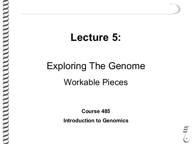 Lecture 5: Exploring The Genome Workable Pieces Course 485 Introduction to Genomics