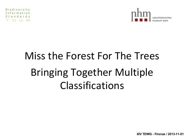 Miss the Forest For The Trees Bringing Together Multiple Classifications  XIV TDWG - Firenze / 2013-11-01