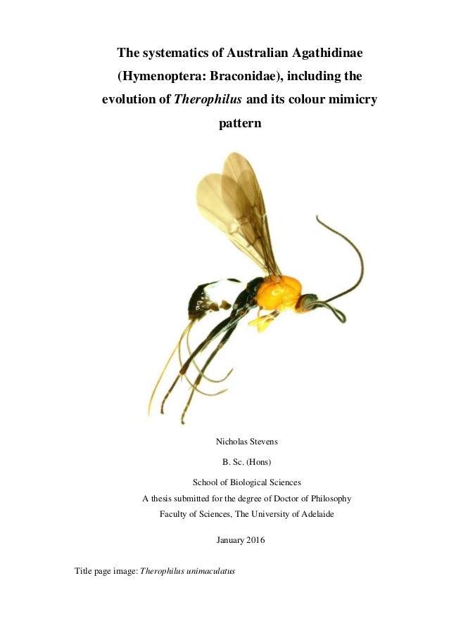 aussie phd thesis