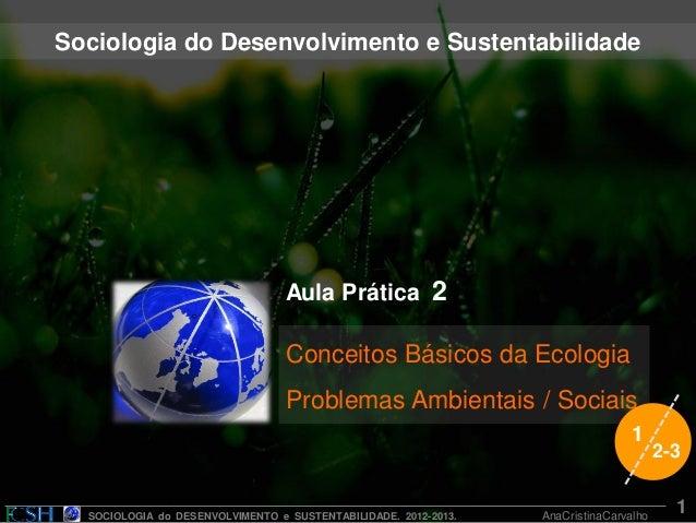 SOCIOLOGIA do DESENVOLVIMENTO e SUSTENTABILIDADE. 2012-2013. AnaCristinaCarvalho Aula Prática 2 Conceitos Básicos da Ecolo...