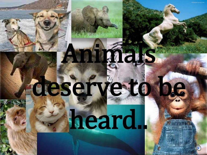 Animals deserve to be heard..<br />