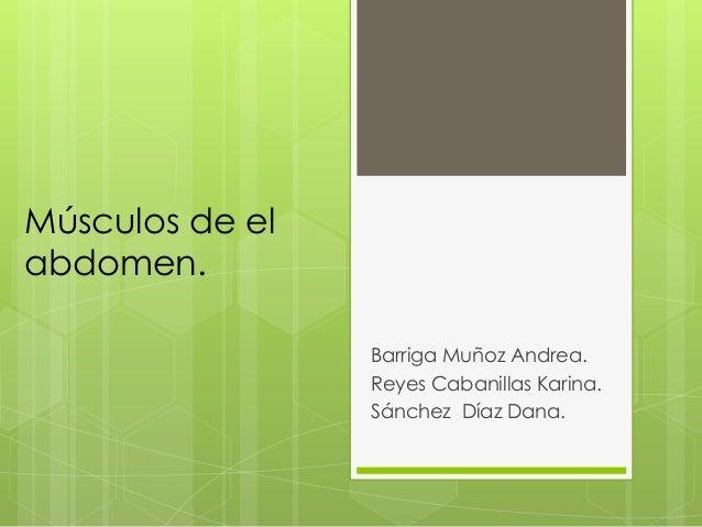 Músculos de el abdomen. Barriga Muñoz Andrea. Reyes Cabanillas Karina. Sánchez Díaz Dana.