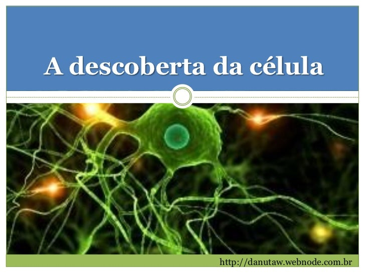 A descoberta da célula             http://danutaw.webnode.com.br