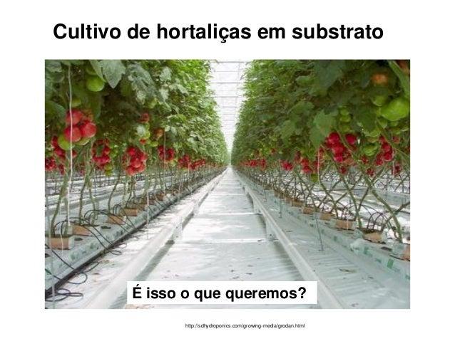 Cultivo de hortaliças em substrato http://sdhydroponics.com/growing-media/grodan.html É isso o que queremos?