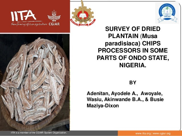 IITA is a member of the CGIAR System Organization. www.iita.org | www.cgiar.org SURVEY OF DRIED PLANTAIN (Musa paradisiaca...