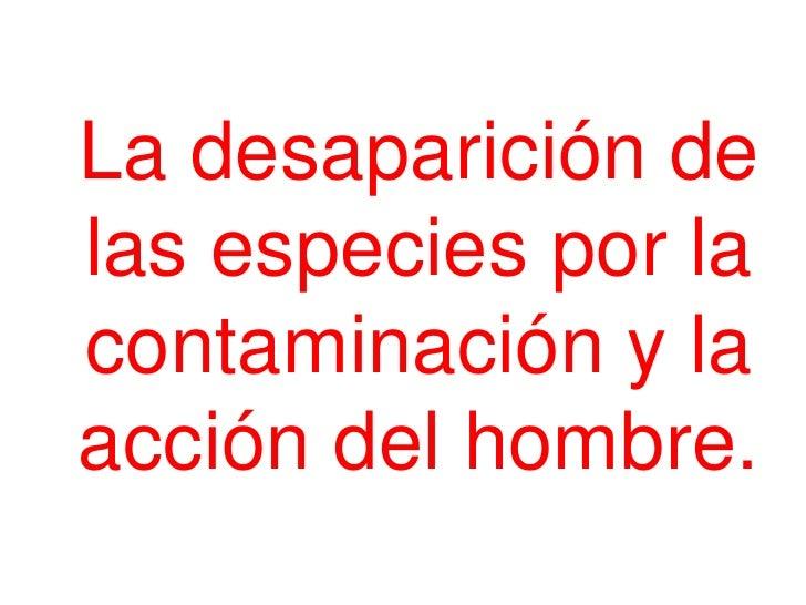 La desaparición delas especies por lacontaminación y laacción del hombre.