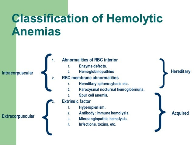 hemolytic anemia (cell membrane defect), Skeleton