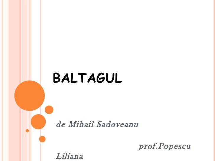 BALTAGULde Mihail Sadoveanu                      prof.PopescuLiliana