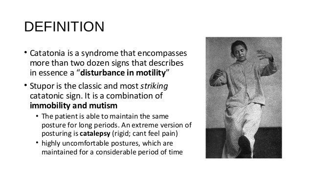 Schizophrenia Definition Psychology >> Catatonia (FINAL PRES.) (2)