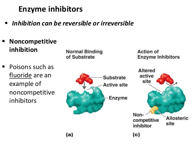 enzyme inhibition Noncompetitive inhibitors the other type of inhibition is noncompetitive inhibitionin noncompetitive inhibition, a molecule binds to an enzyme somewhere other than the active site.
