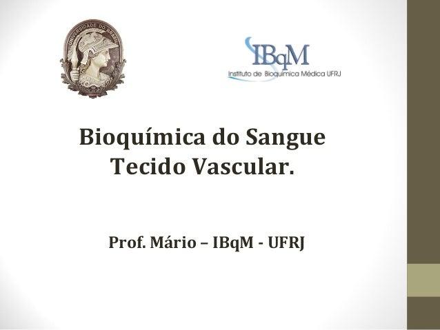 Bioquímica do Sangue   Tecido Vascular.  Prof. Mário – IBqM - UFRJ