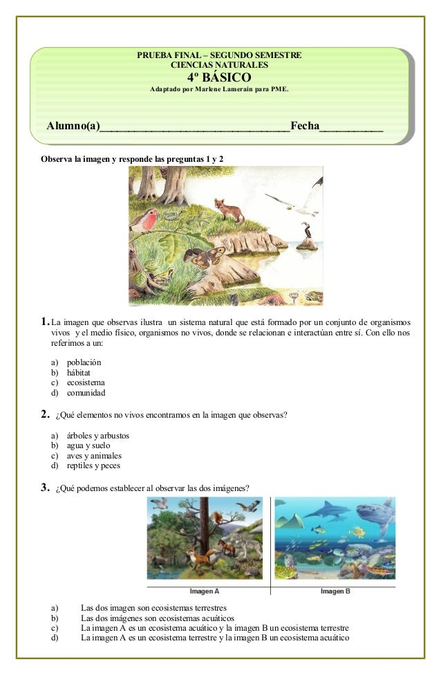 4 b sico c nat prueba pme for Definicion de cuarto